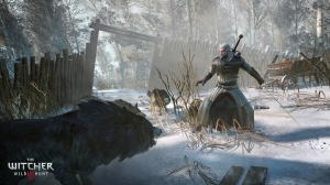 the_witcher_3_wild_hunt_02