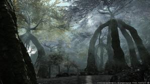 final_fantasy_xiv_heavensward_05