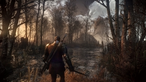 the_witcher_3_wild_hunt_11