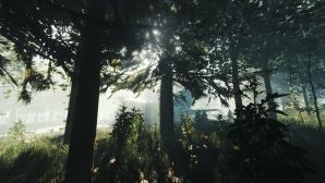 the_forest_01