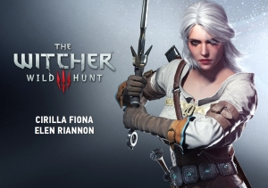 the_witcher_14