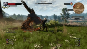 the_witcher_3_wild_hunt_02.jpg