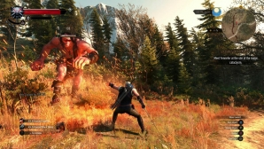 the_witcher_3_wild_hunt_03.jpg
